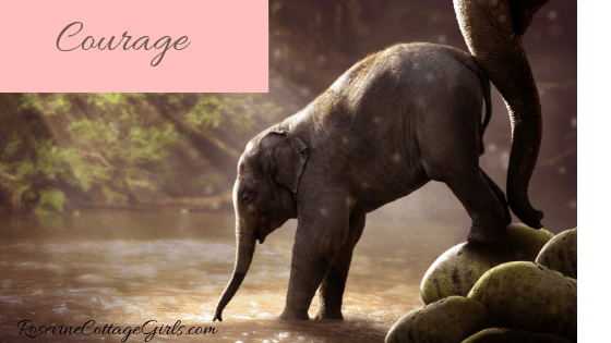 photo of a baby elephant stepping off large rocks and into a river with his mother behind him. Text reads - courage | Rosevinecottagegirls.com Courage, Have Courage, Be Brave, Bravery Feather, Fear Not, by Rosevine Cottage Girls