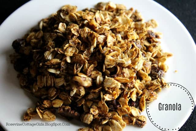 photo of a white bowl filled with granola | rosevinecottagegirls.com