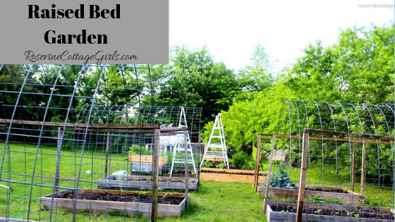 Raised bed garden with trellis