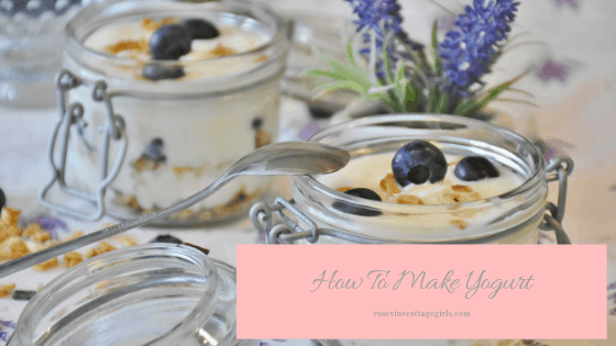 photo of flip top canning jars with yogurt in them and blueberries with flowers on the table how to make yogurt, making yogurt, homemade yogurt, making yogurt from scratch, making yogurt in a crockpot, by Rosevine Cottage Girls