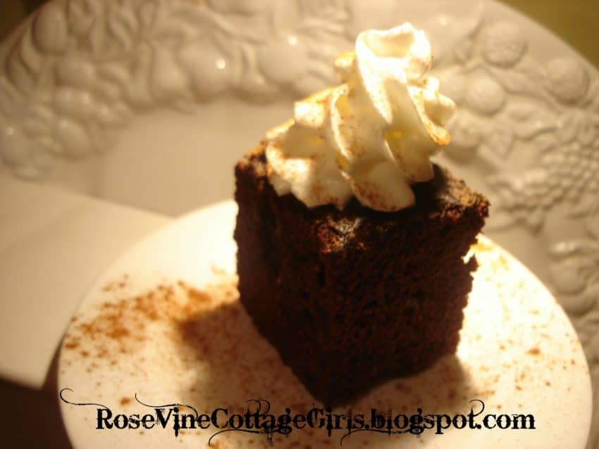 java cake | rosevinecottagegirls.com | photo of java chocolate cake on a white plate with whipped cream on top | rosevinecottagegirls.com