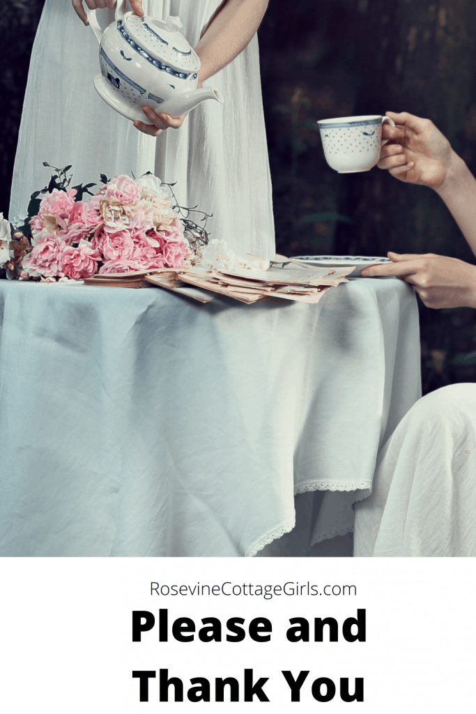 please and thank you | cottage charm | photo of one woman servint tea to another at a pretty table with flowers | rosevinecottagegirls.com