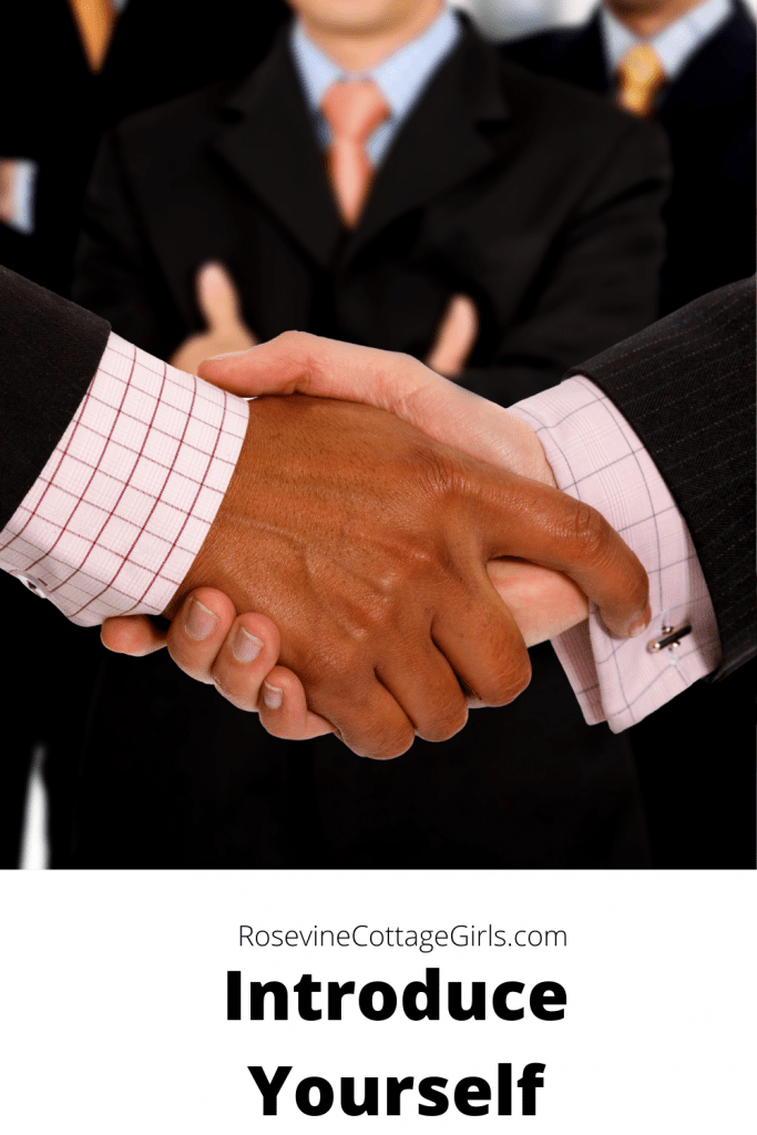 photo of two hands shaking in greeting | text : introduce yourself | rosevinecottagegirls.com