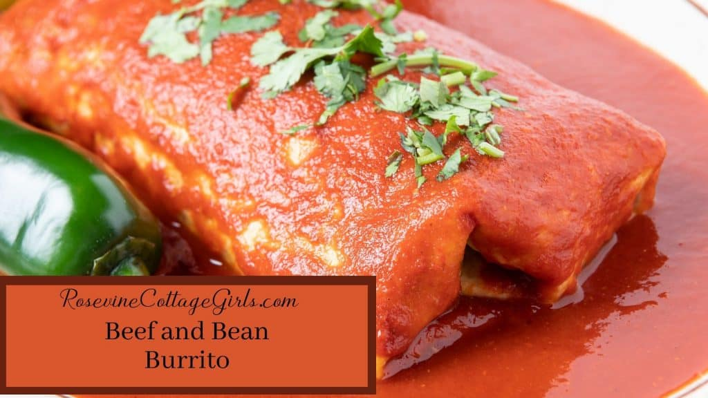 Beef and Bean Burrito   Photo of a beef and bean burrito with red sauce and topped with cilantro by Rosevinecottagegirls.com