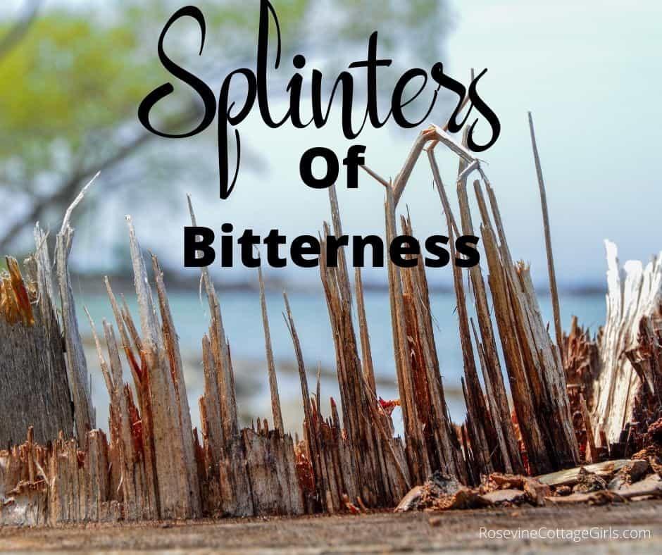 Splinters and Bitterness - photo of splinters of wood standing up by rosevinecottagegirls.com
