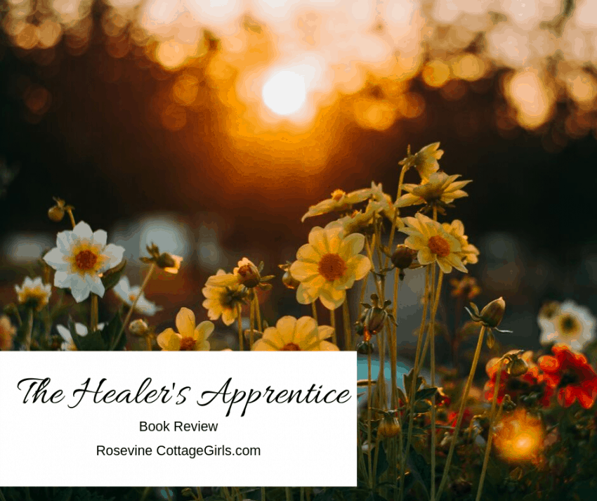 The Healer's Apprentice book review