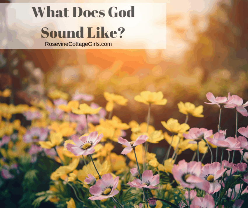 What does God Sound Like? The Sound of God? The Sound of God in the Garden of Eden by RosevineCottageGirls.com