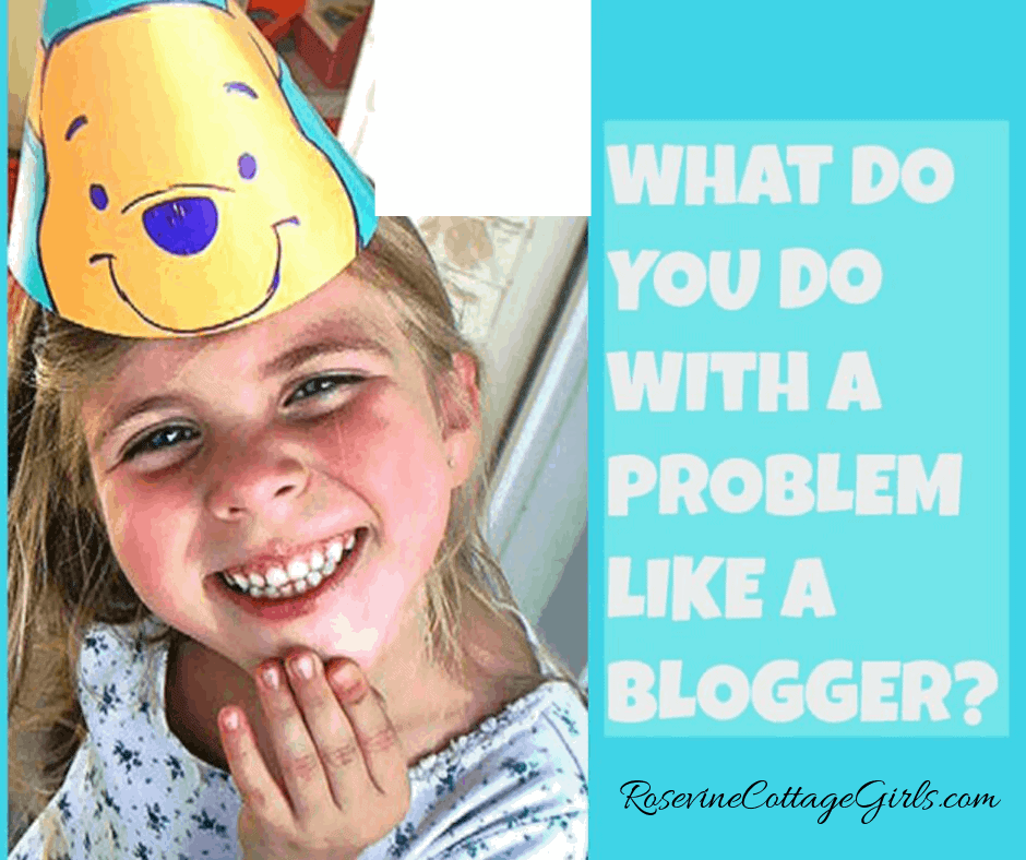 What to do with a problem like a blogger, how to help a blogger, by Rosevine Cottage girls