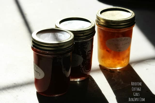 Canning Food | jelly jars on the counter in the sunshine