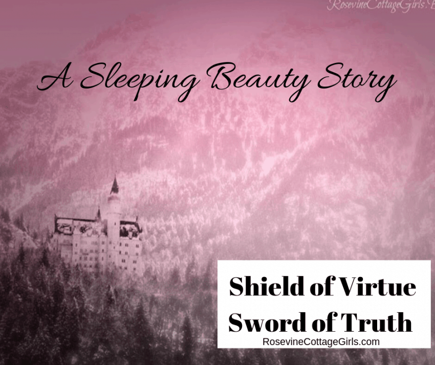 Shield of virtue sword of truth Sleeping beauty by Rosevine Cottage Girls