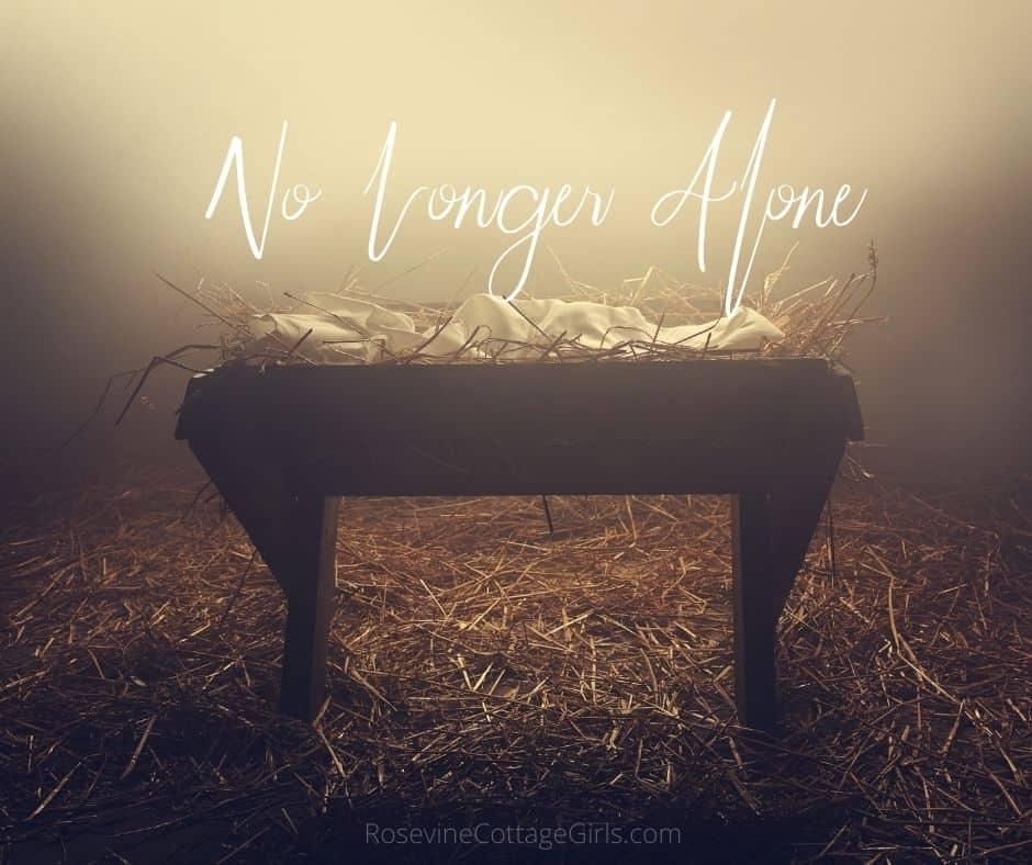 No longer alone for Christmas | photo of the manger where Christ was laid | rosevinecottagegirls.com