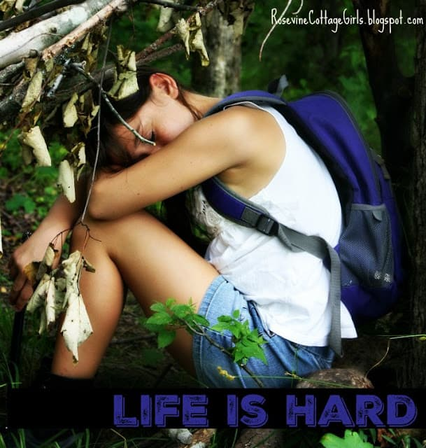 Life Is Hard, Life is Difficult by Rosevine Cottage Girls