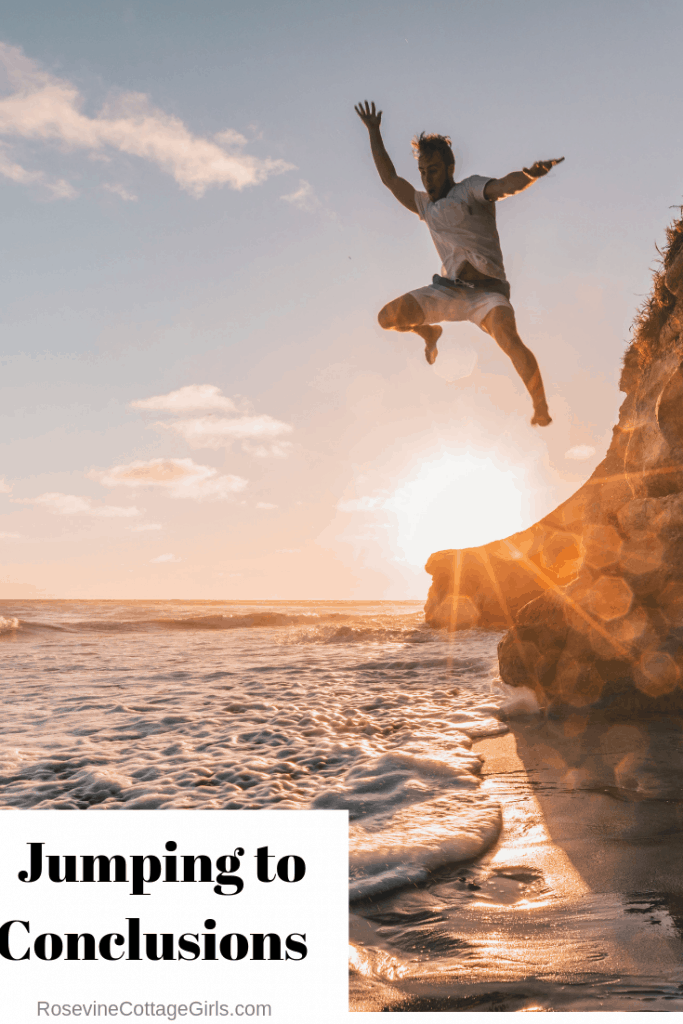 jumping to conclusions by Rosevine Cottage Girls
