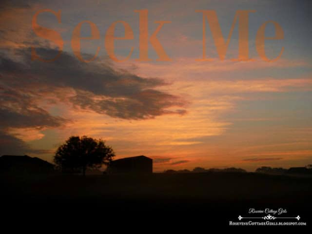 seek me, seeking God, finding god, Looking for God, (C) Rosevine Cottaqe Girls