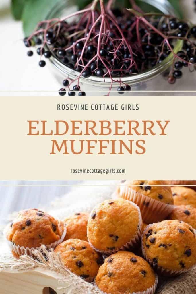 Elderberries in a bucket and elderberry muffins