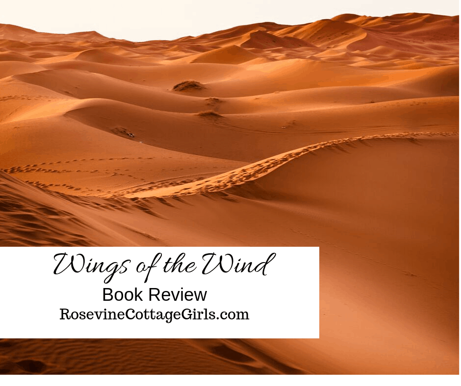 Wings of the Wind Book review by Rosevine Cottage girls