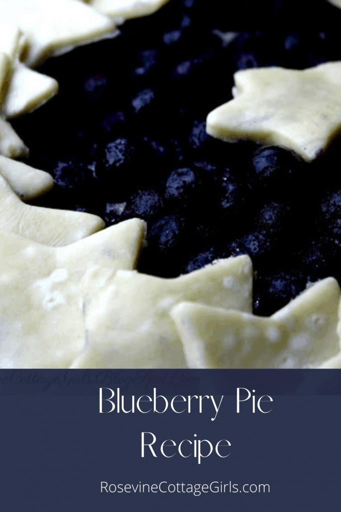 Pinnable image for blueberry pie | photo of a closeup of blueberry pie with a star cutout crust as a wreath around the edges of the pie  | by Rosevine Cottage Girls