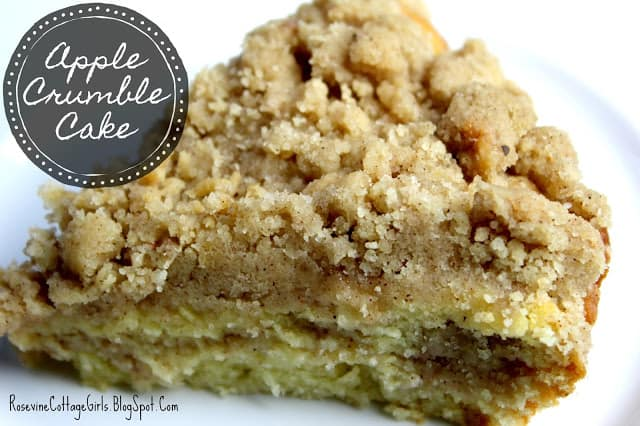 Close up of a slice of apple crumble cake on a white plate | Apple Crumble Cake Recipe | rosevinecottagegirls.com