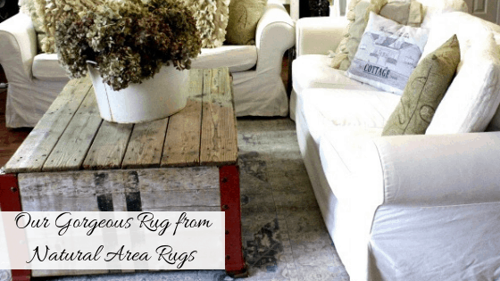 Gorgeous Rug from Natural Area Rugs, Farmhouse Rugs, Natural Area Rugs, Natural Area Rug review, by Rosevine Cottage Girls