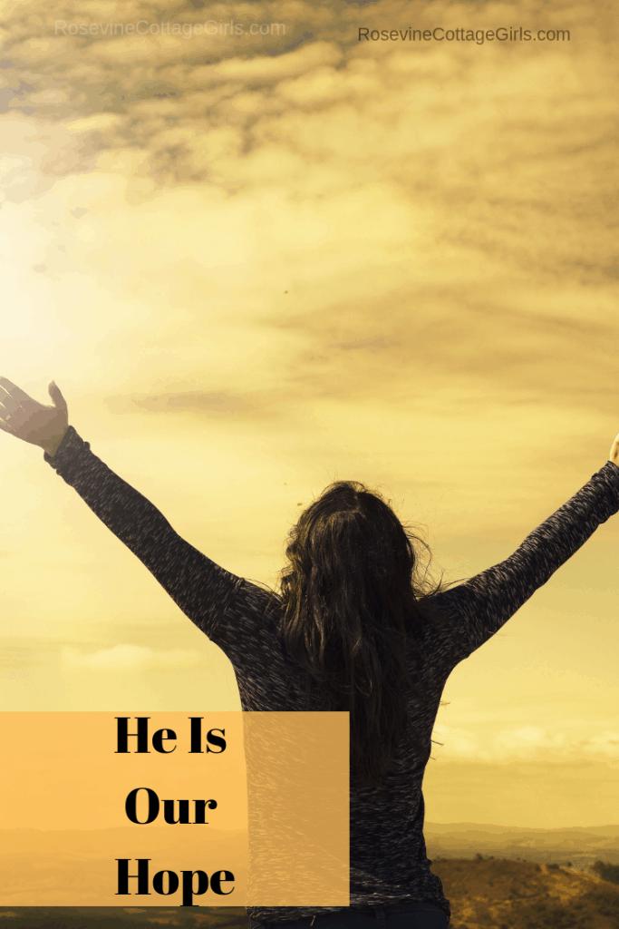 He is our hope, hope, by rosevine cottage girls