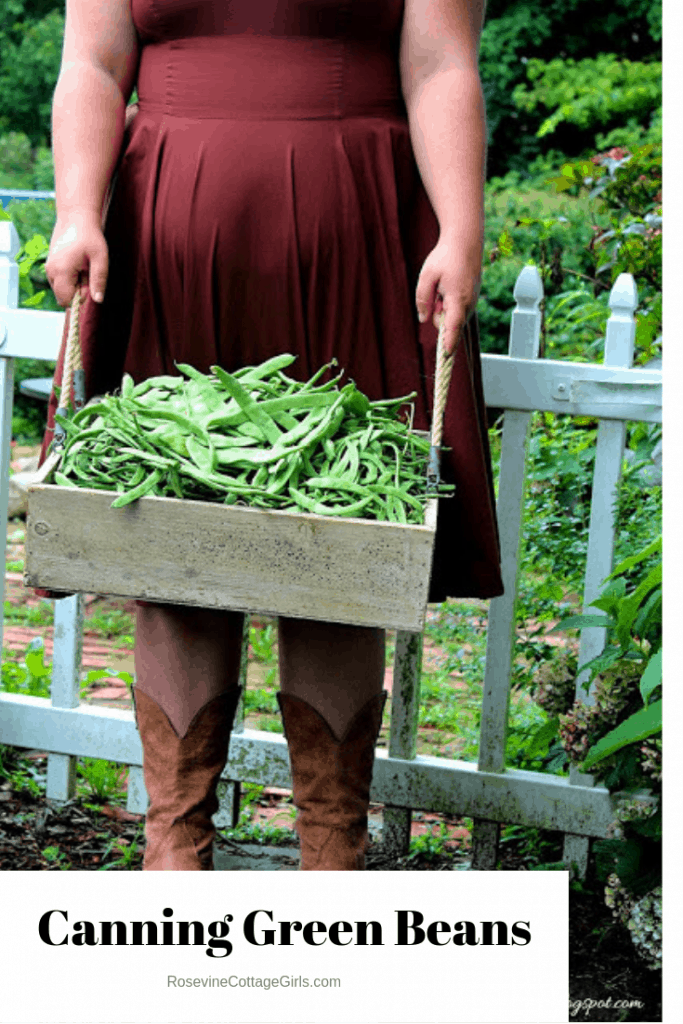 Woman in a garden in a brown dress holding a wooden box filled with green beans | text how to can green beans | rosevinecottagegirls.com