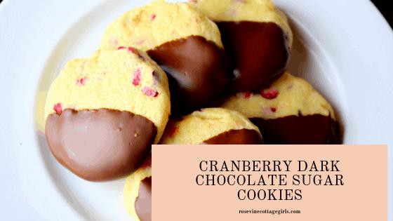 cranberry dark chocolate sugar cookies