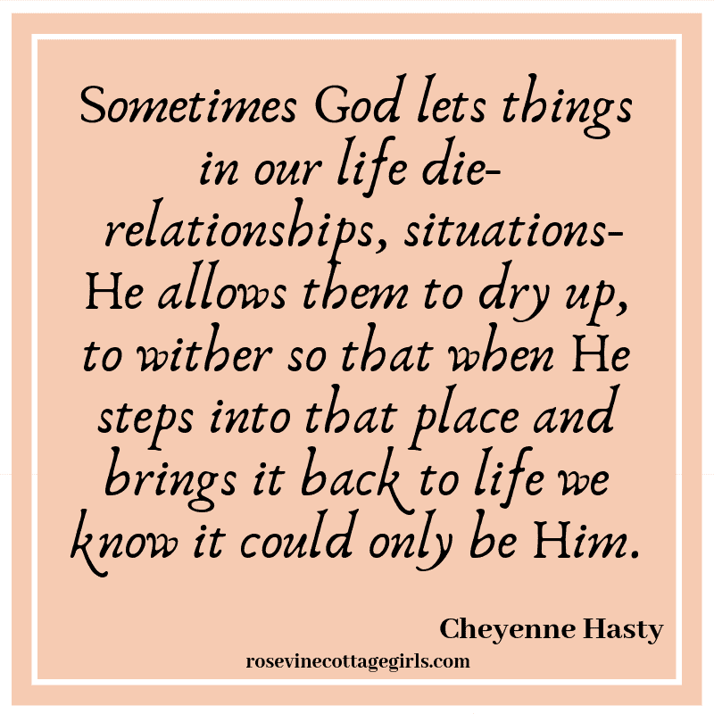 Sometimes God lets things in our life die- relationships, situations- He allows them to dry up, to wither so that when He steps into that place and brings it back to life we know it could only be Him.