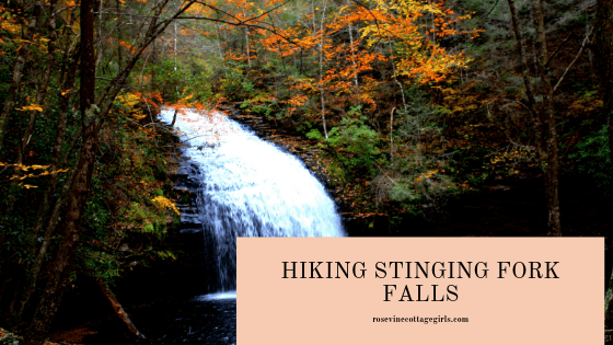 hiking stinging fork falls