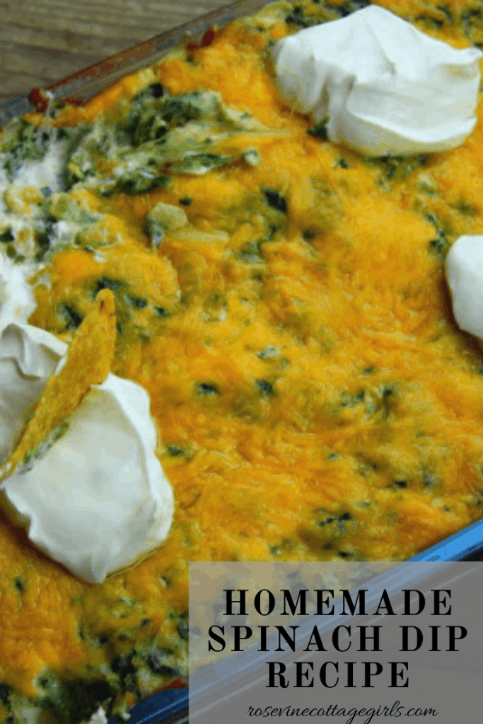 Homemade Spinach Dip Recipe #rosevinecottagegirls
