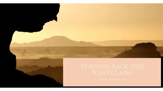 turning back the wasteland