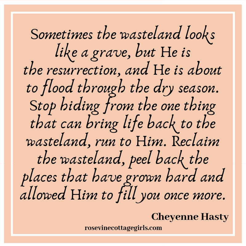 Sometimes the wasteland looks like a grave, but He is theresurrection, and He is about to flood through the dry season. Stop hiding from the one thing that can bring life back to the wasteland, run to Him. Reclaim the wasteland, peel back the places that have grown hard and allowed Him to fill you once more.