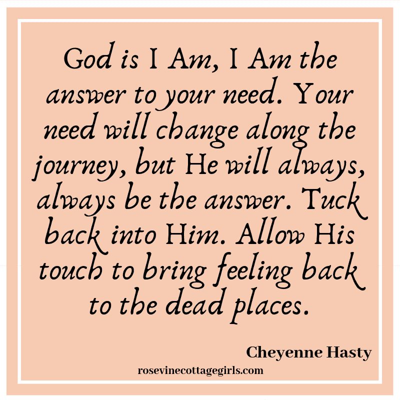 God is I Am, I Am the answer to your need. Your need will change along the journey, but He will always, always be the answer.Tuck back into Him. Allow His touch to bring feeling back to the dead places.