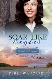 Soar Like Eagles by Terri Wangard book review