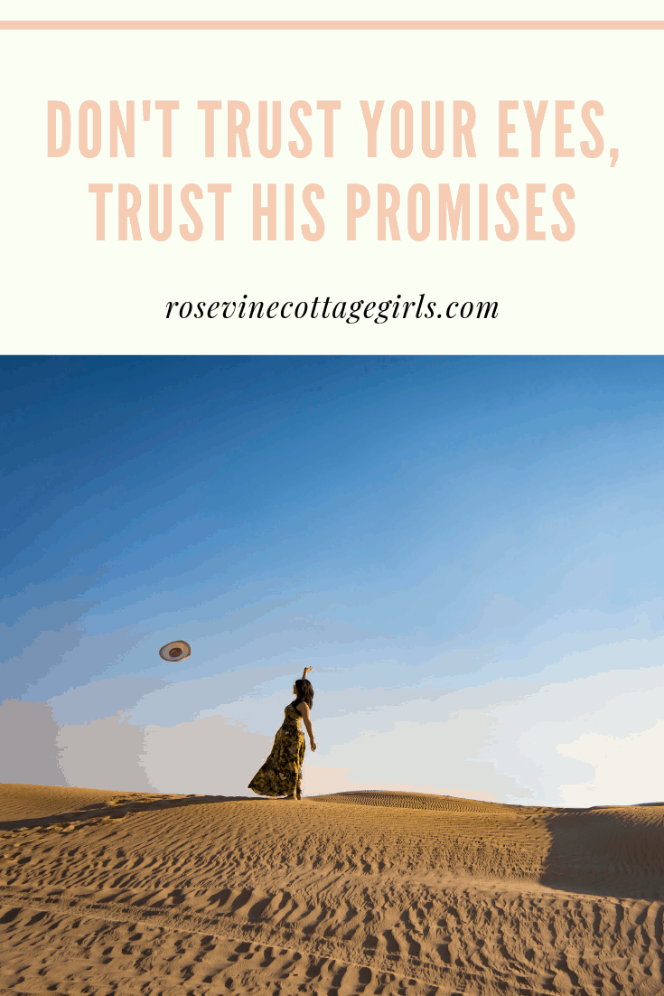 Trusting God's promises when you can't see the answer, when the future isn't clear trust God, Trust God he holds your future, Trust in the Lord with all your mind, Believe what God says