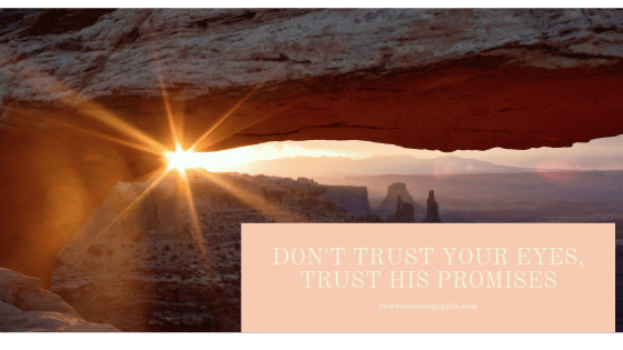Keep trusting God's promises when you can't see the answer to your prayers, Trust God with everything you've got, Trusting God when it doesn't make sense, Trust in the Lord  with all your heart and lean not  on your own understanding Proverbs 3:5-6