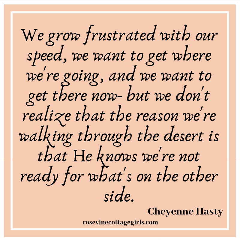 We grow frustrated with our speed, we want to get where we're going, and we want to get there now- but we don't realize that the reason we're walking through the desert is that He knows we're not ready for what's on the other side.