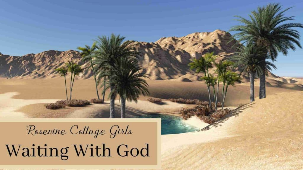 Desert oasis | Waiting With God | A Look At The Israelites Complaining In The Wilderness