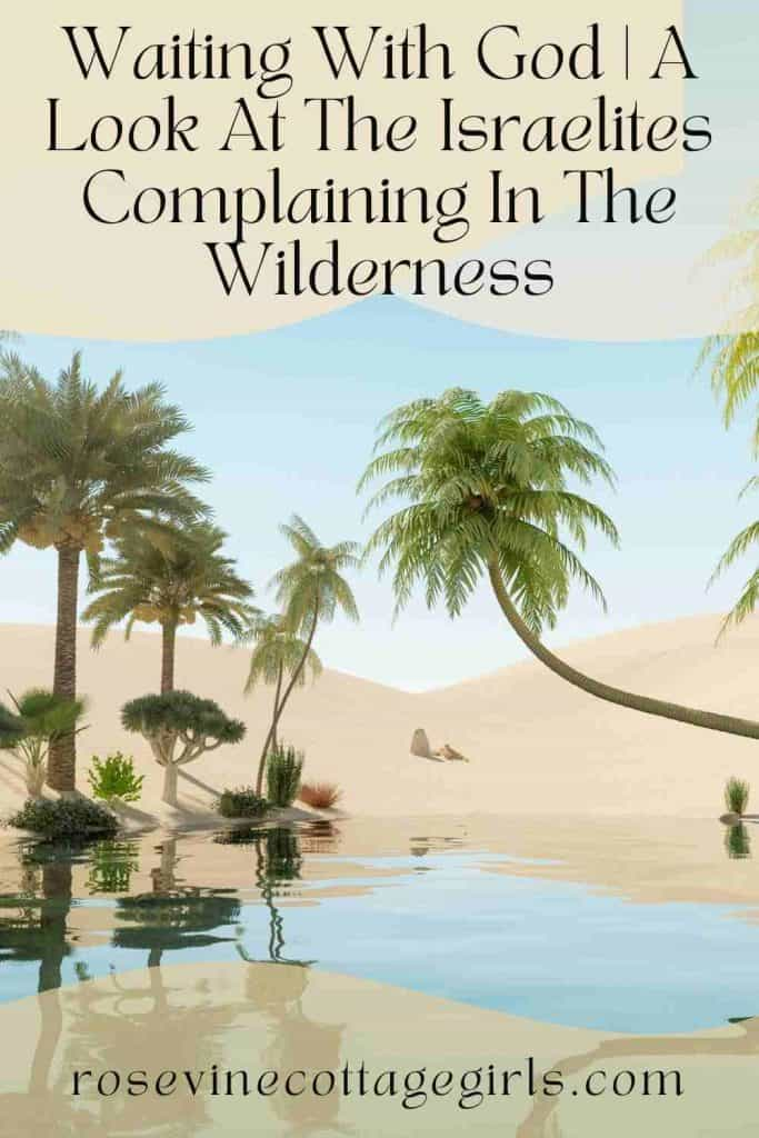 Desert oasis with palm trees | Waiting With God | A Look At The Israelites Complaining In The Wilderness