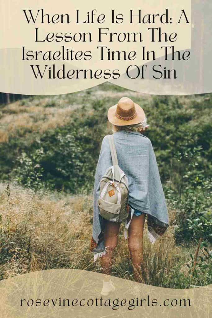 Woman standing on a hill side   What We Can Learn From The Israelites Time In The Wilderness Of Sin