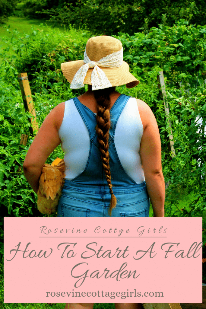 how to start a fall garden