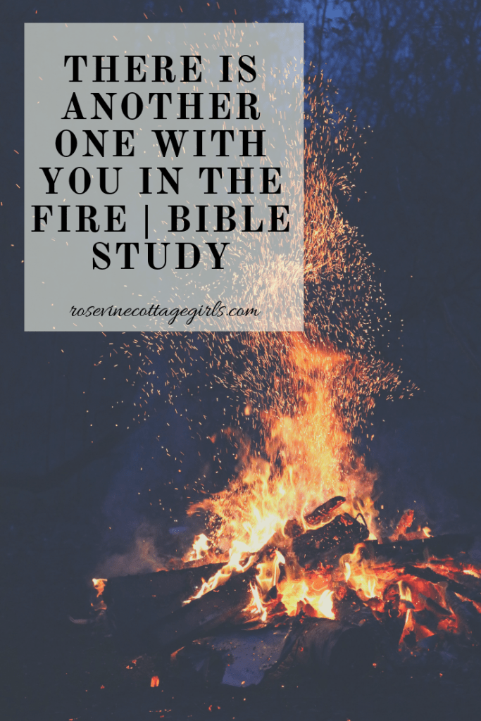 When I Walk Through The Fire God Is With Me | Bible Study on Daniel 3 Shadrach, Mechasch and Abednego