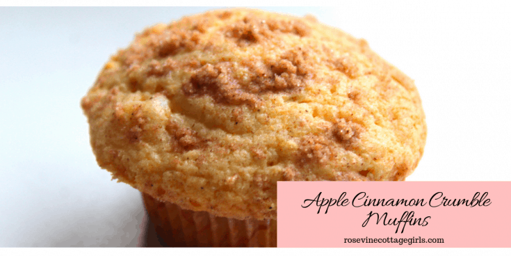 photo of an apple crumble muffin on a white background | Apple Crumble Muffin Recipe | The Best Apple Crumble Muffins | RosevineCottageGirls.com