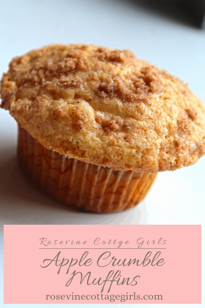Delicious Homemade Apple Cinnamon Crumble Muffins for a taste of fall the whole family will love. #RosevineCottageGirls