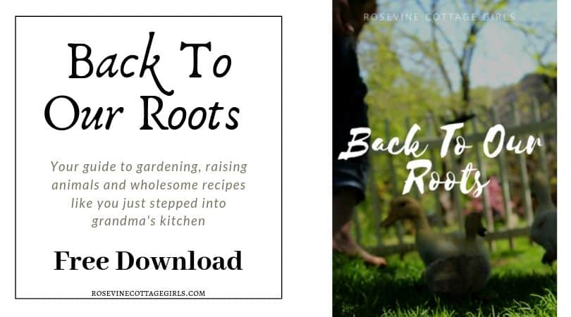 Back to our Roots Ebook, Homesteading Ebook, free book Back to our roots