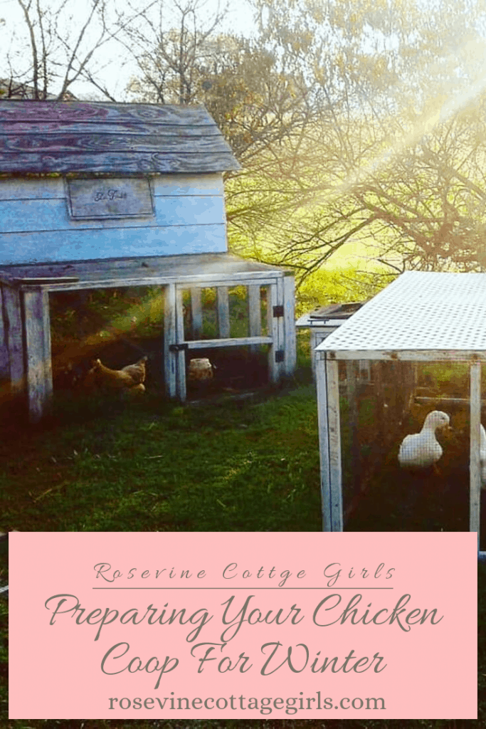 How to prepare your chickens and coop for winter #RosevineCottageGirls