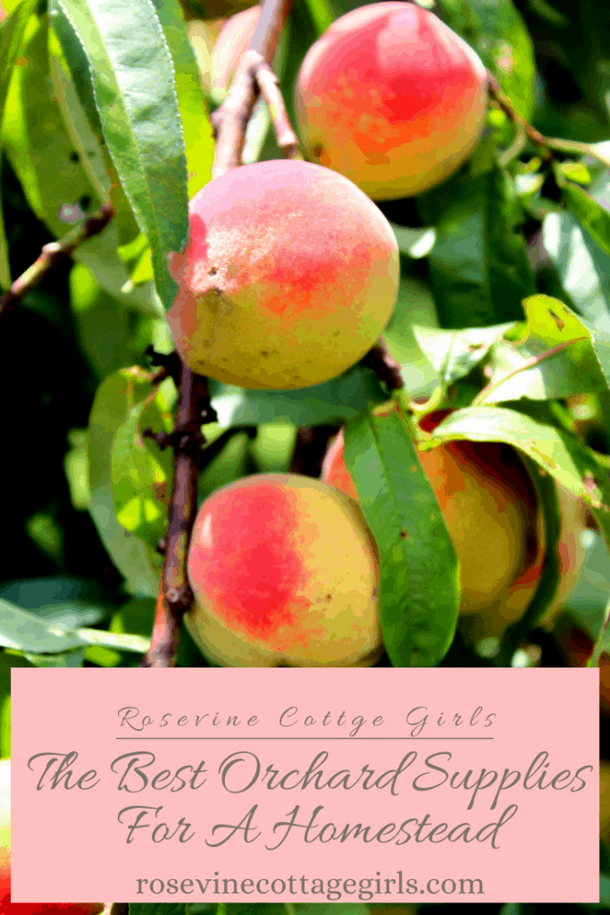 The best orchard supplies, and tools for a homestead or farm to care for your orchard and harvest your crop #rosevinecottagegirls