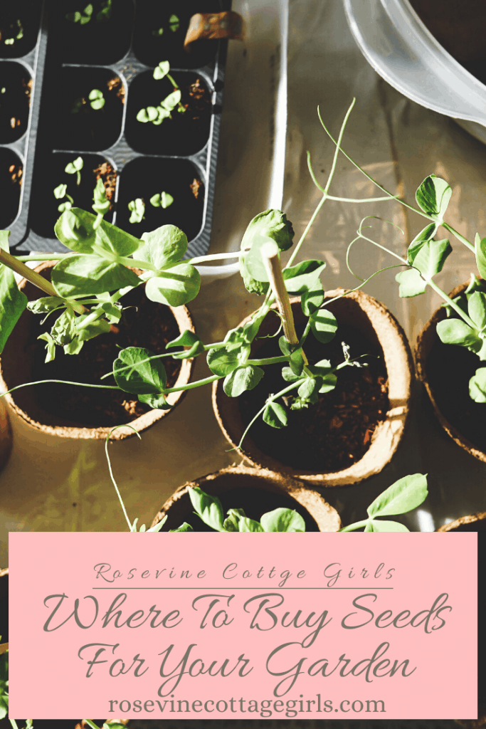 Where to buy seeds for your garden #rosevinecottagegirls
