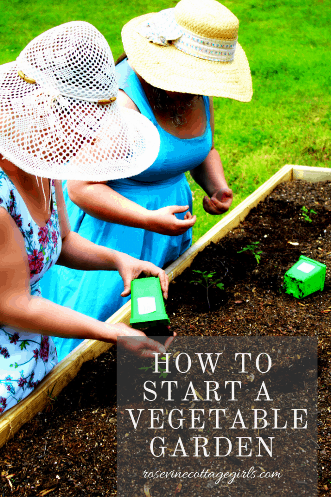 How to start a vegetable garden from scratch in your own backyard #rosevinecottagegirls #backyardgarden #growyourownfood