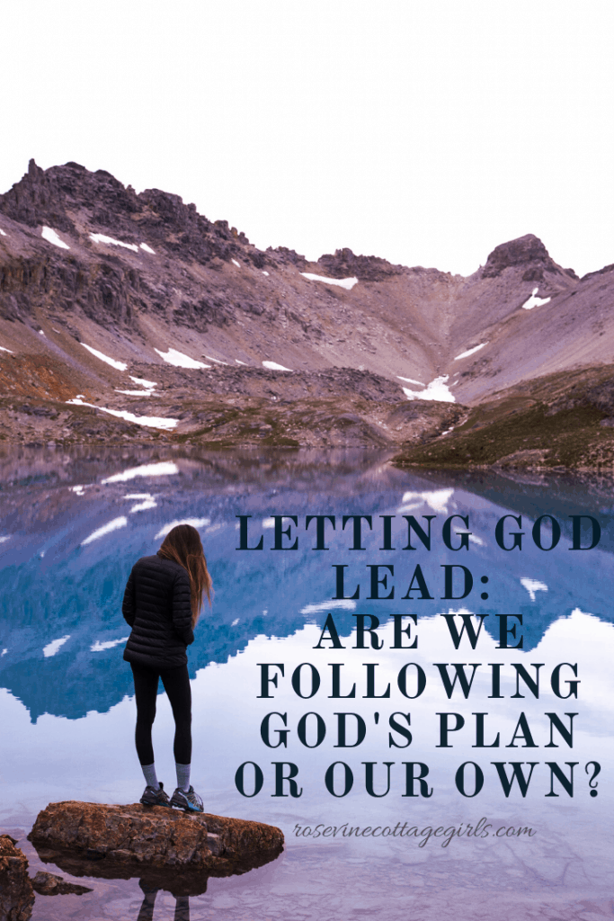 Are we truly letting God lead? Or are we pushing our plans ahead in our own power? #RosevineCottageGirls