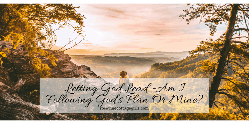 Are we letting God lead? Or following our own plans? #RosevineCottageGirls